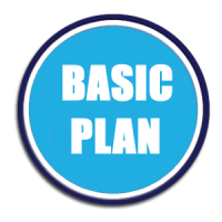 Social Media Management - Basic Plan
