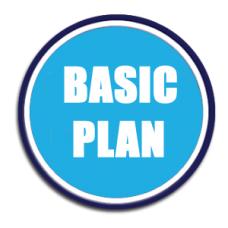 Social Media Management - Basic Plan