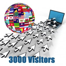 Global Traffic - 3000 visitors